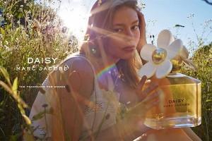 Daisy-ferromony